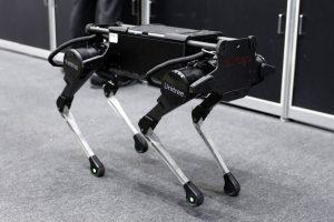 В Китае робо-собак запрягли в упряжку