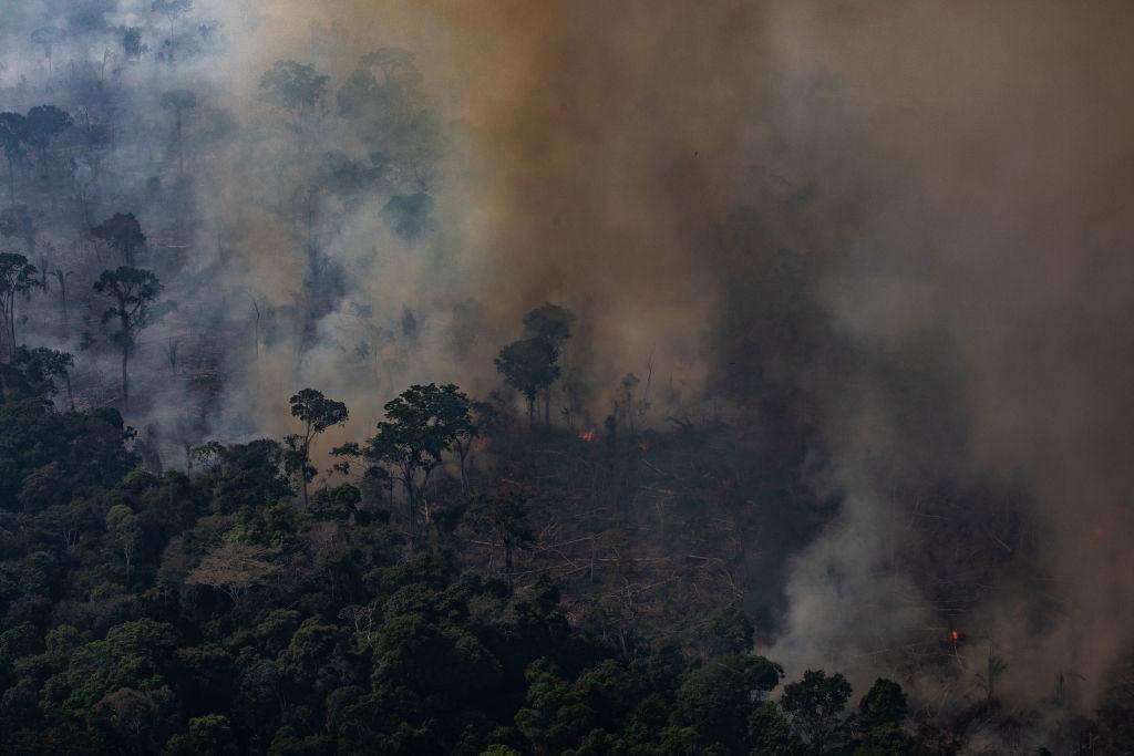 Из-за лесных пожаров в Бразилии образовалось гигантское облако угарного газа
