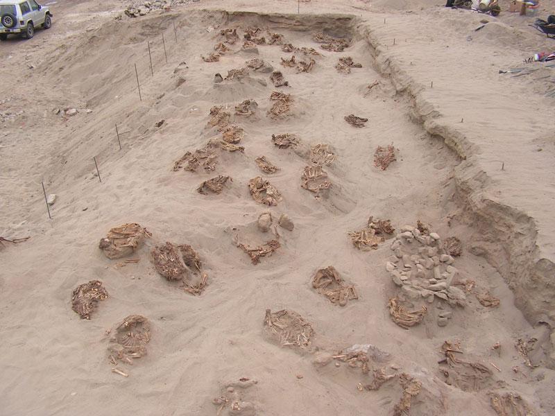 В Перу обнаружено самое масштабное детское захоронение в истории