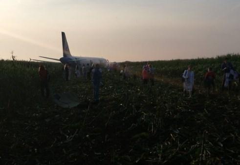В России самолет сел на кукурузное поле из-за чаек