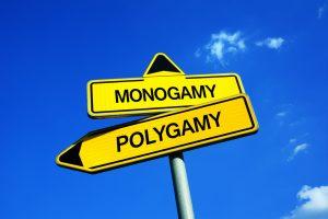 Полигамия  матери полезна для потомства — ученые