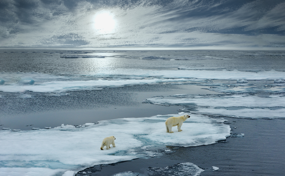 В Арктике зафиксировали абсолютный температурный рекорд - 35℃