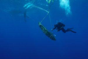 Из Эгейского моря вытащили 2500-летний якорь