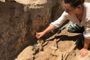 В Запорожье нашли богатую могилу скифского воина