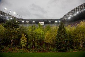 В Австрии посреди стадиона вырос лес