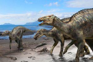 Японцы сложили скелет нового утконосого динозавра