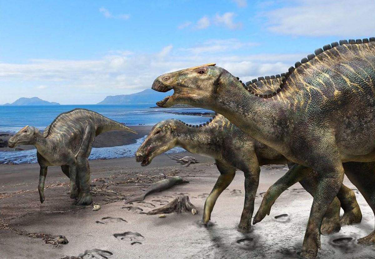 Японцы сложили скелет нового утконосого динозавра.Вокруг Света. Украина