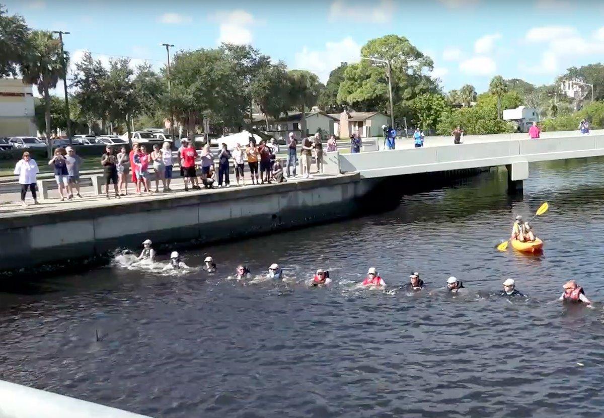 Во Флориде дельфинов спасли из ловушки городского канала