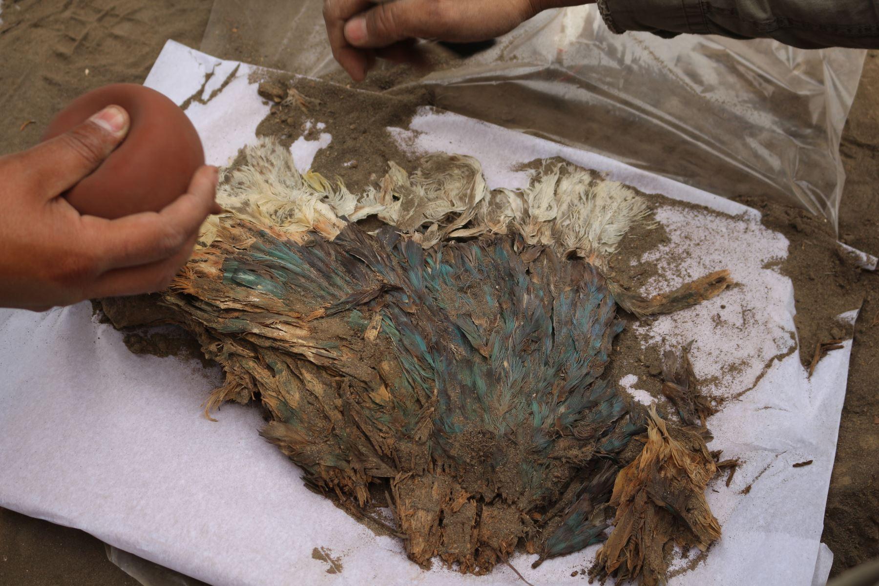 В Перу нашли останки богатого человека из доколумбовой культуры Чиму
