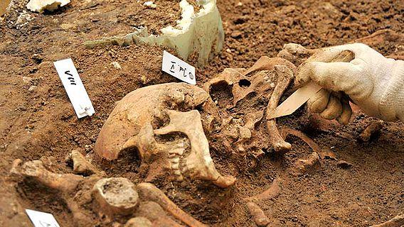 Археологи обнаружили следы древнейшего военного преступления.Вокруг Света. Украина