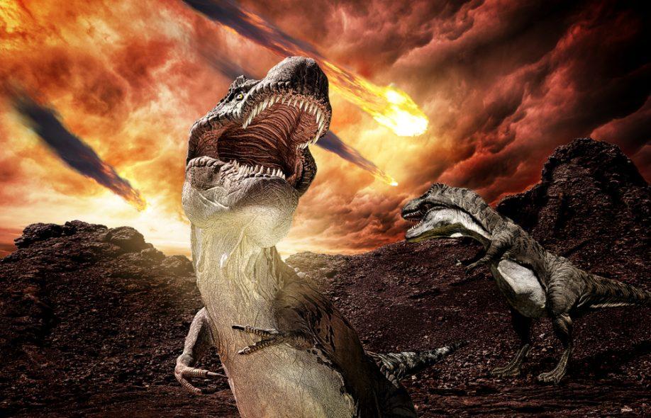 гибель динозавров в картинках с названиями написал песню патимейкер