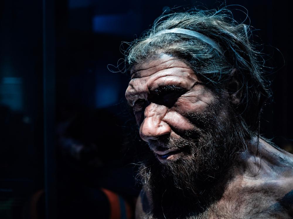 Археологи обнаружили уникальные групповые следы неандертальцев.Вокруг Света. Украина
