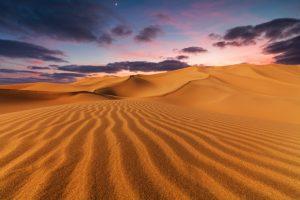 Сахара существует уже 4,6 млн лет: исследование