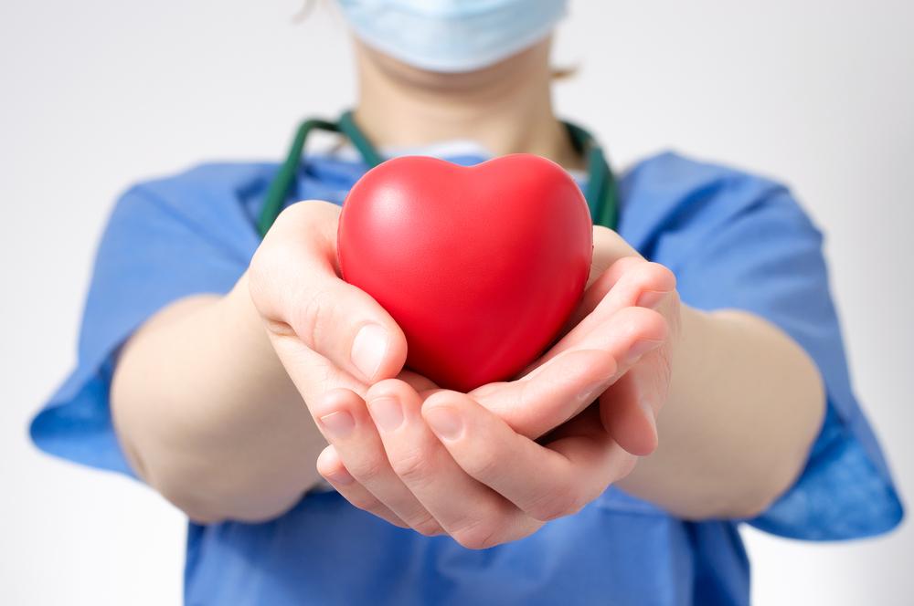 Ученые раскрыли механизмы восстановления клеток сердца
