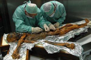 Археоботаники восстановили последний маршрут ледяного человека Этци