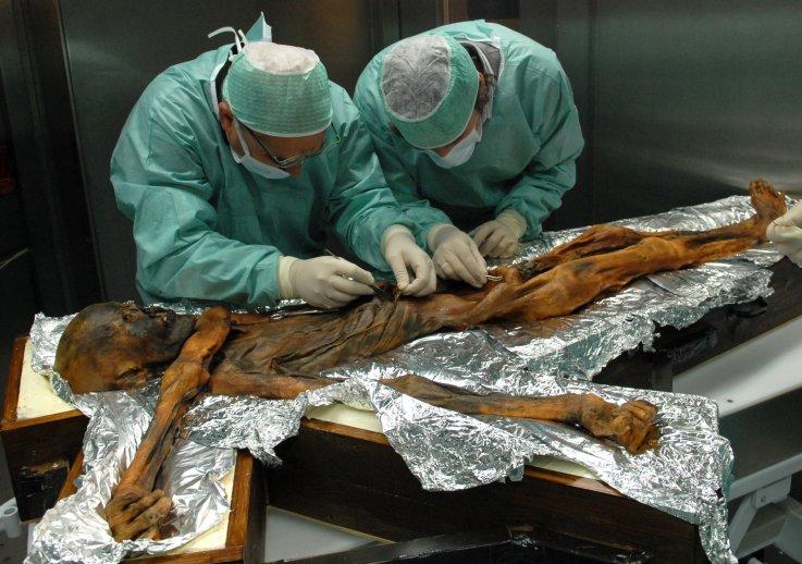 Археоботаники восстановили последний маршрут ледяного человека Этци.Вокруг Света. Украина