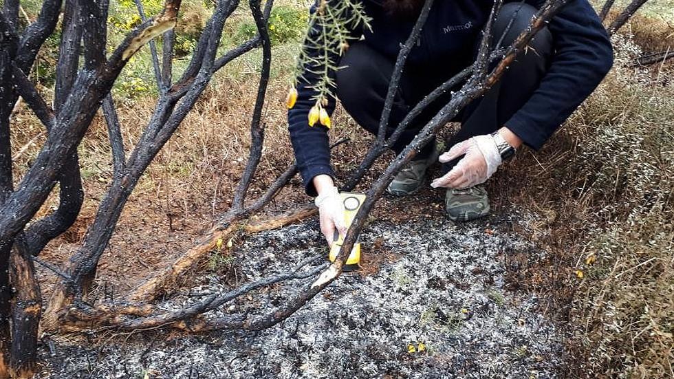 На чилийский остров упали огненные шары неизвестного происхождения