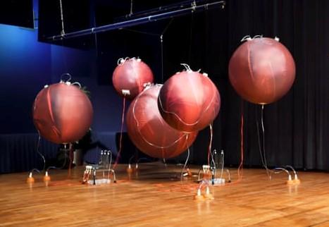 В Нидерландах инкубаторы заменят искусственными матками