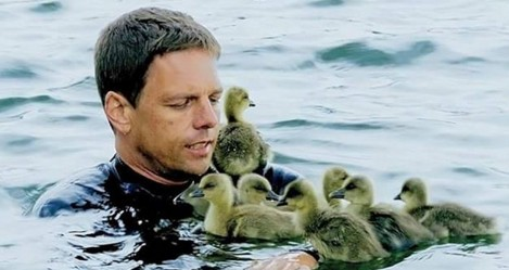 Орнитолог из Германии усыновил семерых гусят.Вокруг Света. Украина