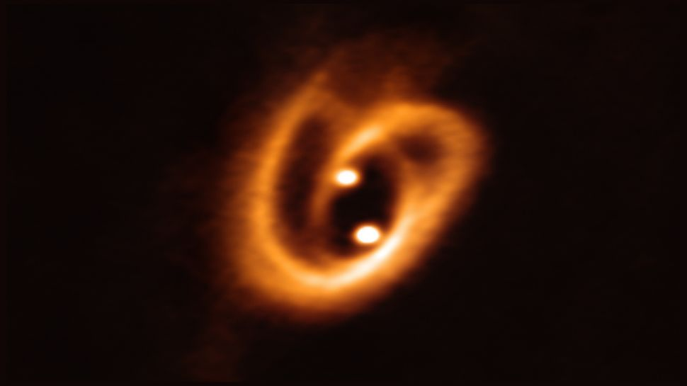 Телескоп ALMA следит за развитием молодой двойной звезды.Вокруг Света. Украина