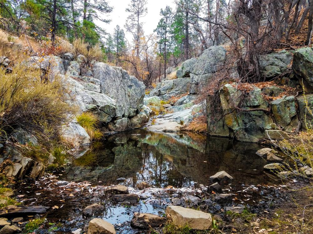 В США из национального парка украли знаменитый валун весом в тонну
