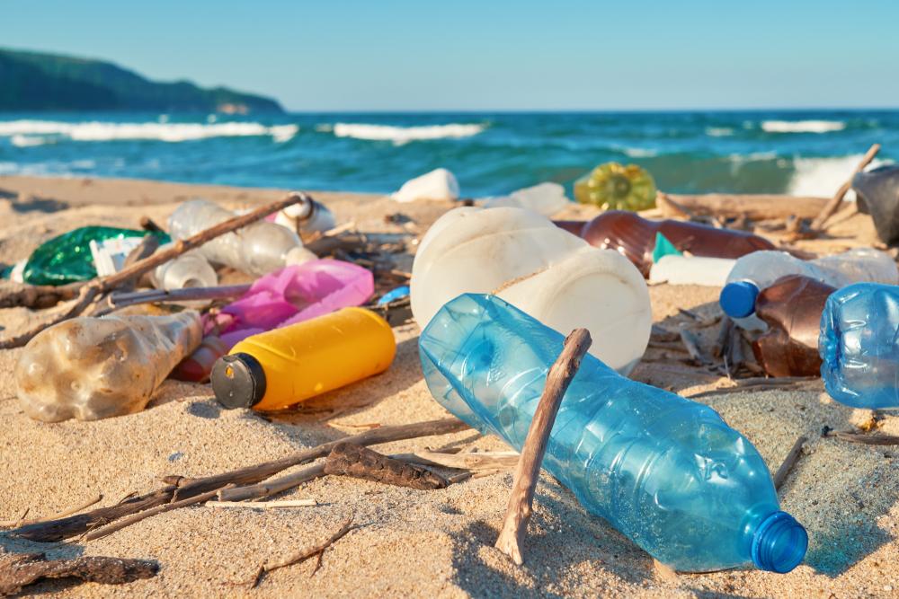 Названы компании, которые больше всего загрязняют планету пластиком.Вокруг Света. Украина