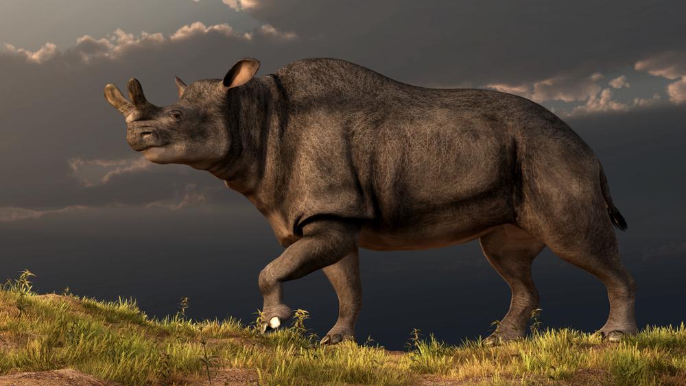 После вымирания динозавров фауна восстанавливалась 100 тысяч лет.Вокруг Света. Украина