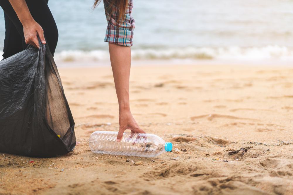 Экологи рассказали, как очистить Черное море