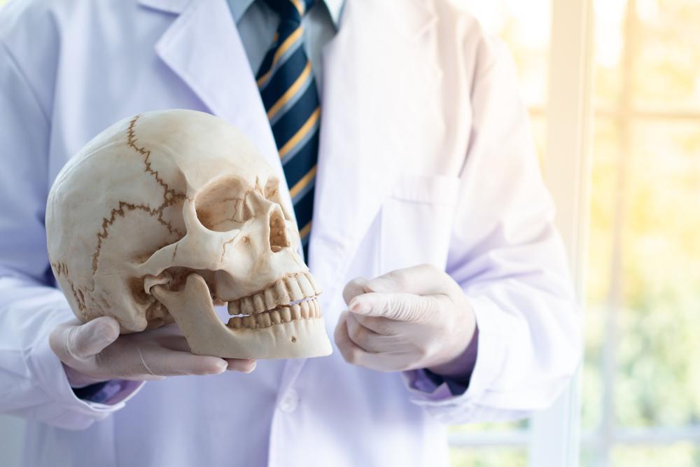 В черепах людей нашли золотое сечение.Вокруг Света. Украина