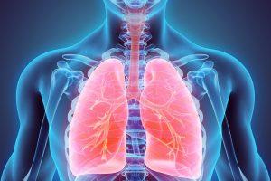 Жир в легких провоцирует развитие астмы – исследование