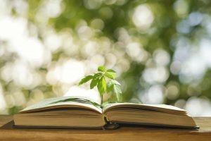 Змушує замислитися: 4 книги про екологію українською