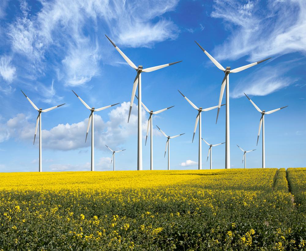 В Украине построят крупнейший ветропарк в Европе.Вокруг Света. Украина