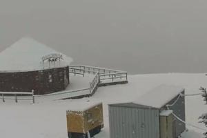 В Карпаты пришла зима: на курортах выпал снег