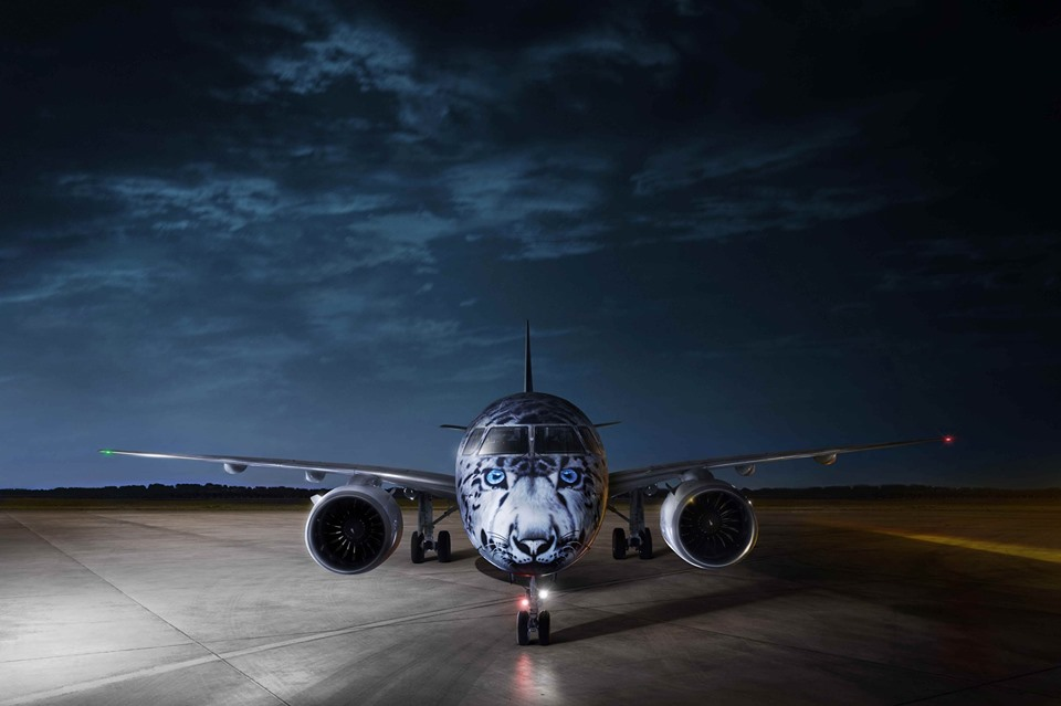 Самолет с портретом снежного барса на борту впервые приземлится в Украине.Вокруг Света. Украина