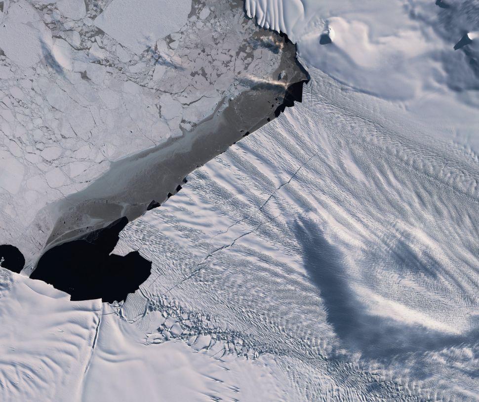 От стремительно тающего ледника Антарктики скоро отколется гигантский айсберг