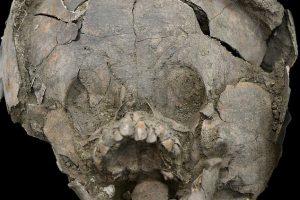 В Эквадоре археологи обнаружили младенцев, похороненных в шлемах из детских черепов