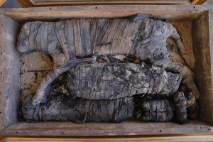 В Египте впервые обнаружили мумии львят