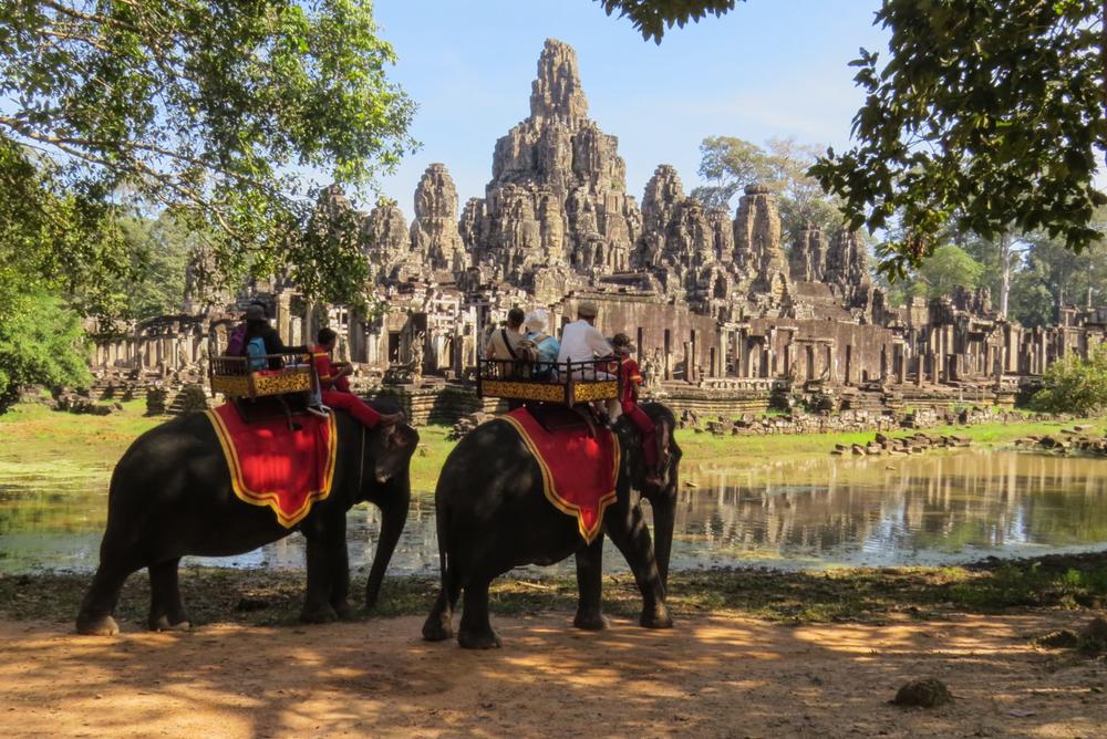 Популярный парк Камбоджи запретил катать туристов на слонах