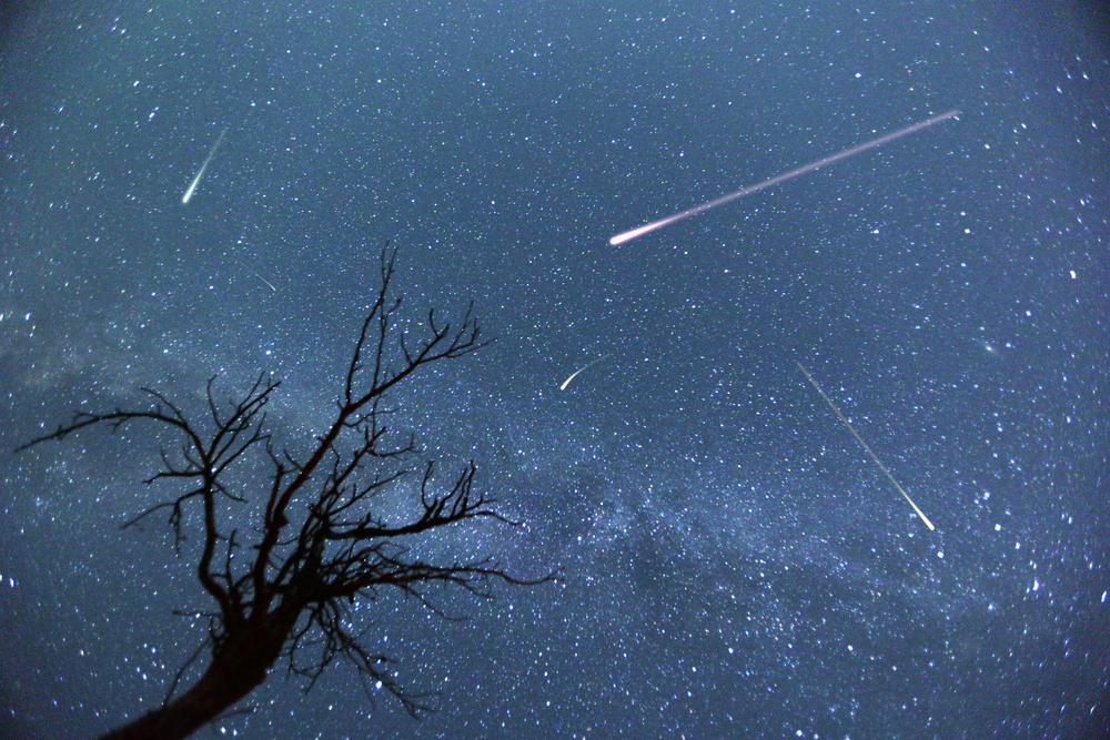 Впервые в истории внутри метеорита обнаружили сахариды