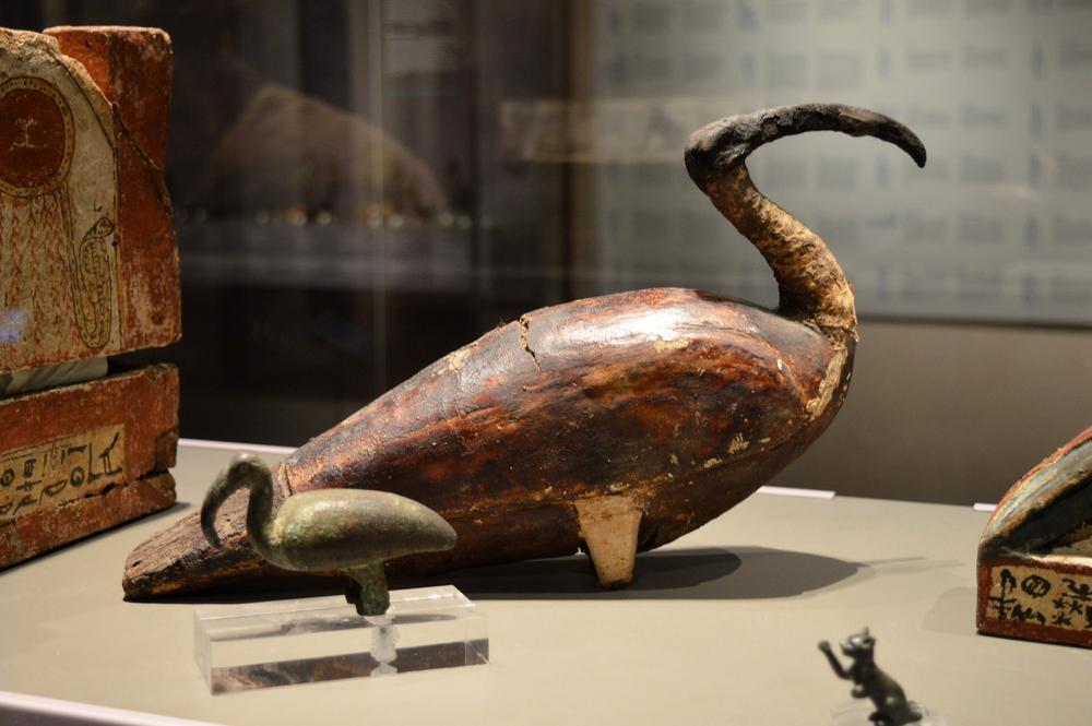 Как египтянам удалось мумифицировать миллионы птиц: исследование