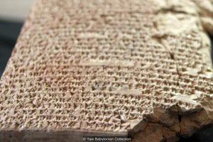 Историки расшифровали древнейшие рецепты