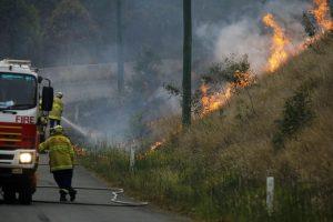 В Сиднее впервые объявлен катастрофический уровень опасности