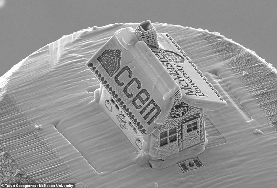 Канадец создал самый крошечный в мире «пряничный домик» с помощью электронного микроскопа