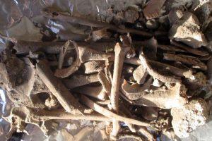 На монашеской горе Афон, куда уже 10 веков допускают только мужчин, нашли женские кости