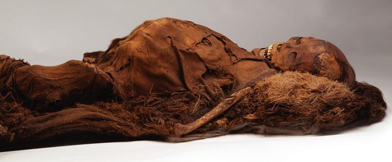 У древних мумий нашли признаки атеросклероза.Вокруг Света. Украина