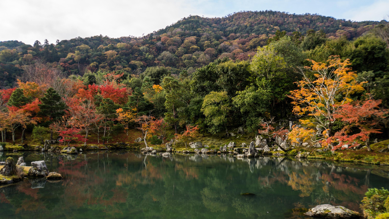 фото Японии