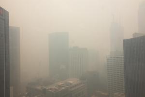 Пожары в Австралии: Сидней задыхается в тучах ядовитого дыма