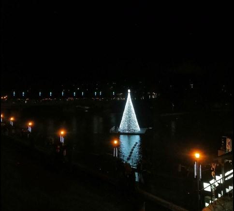 В Литве рождественскую елку установили прямо на реке.Вокруг Света. Украина