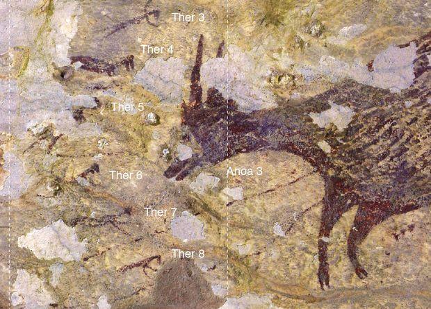 В Индонезии нашли древнейшее изображение охоты.Вокруг Света. Украина
