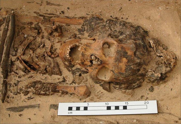 В Египте раскопали загадочный головной убор, который раньше видели только на изображениях